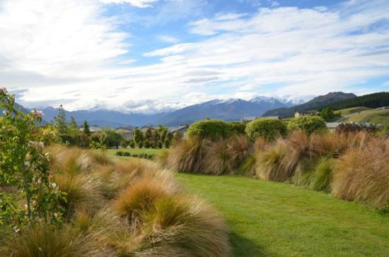 websters-on-wanaka-lodge-4